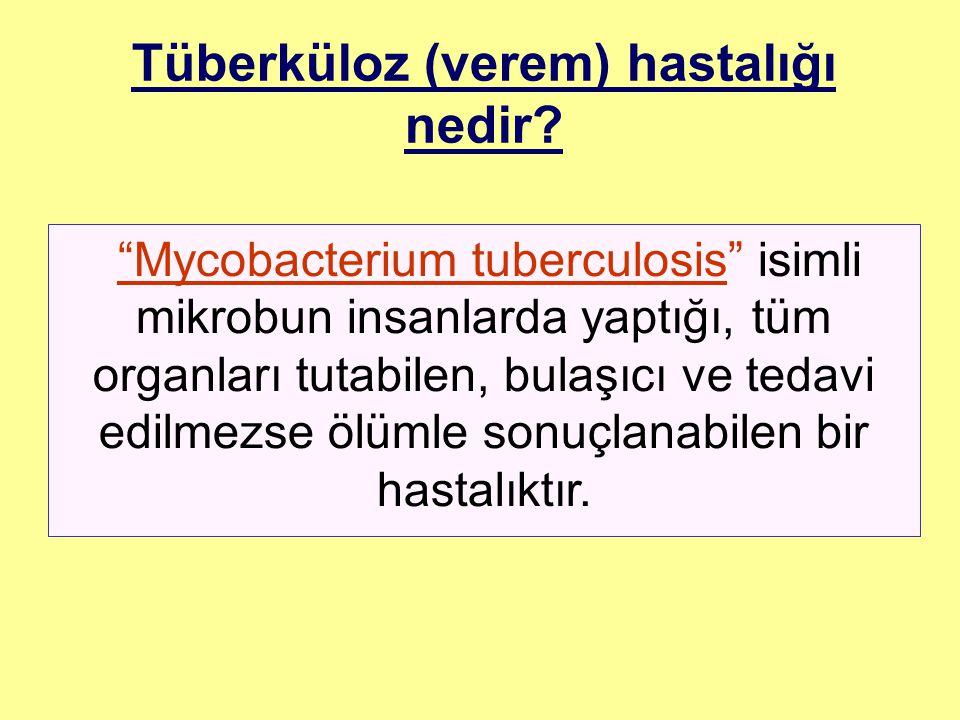 Tüberküloz (verem) hastalığı nedir