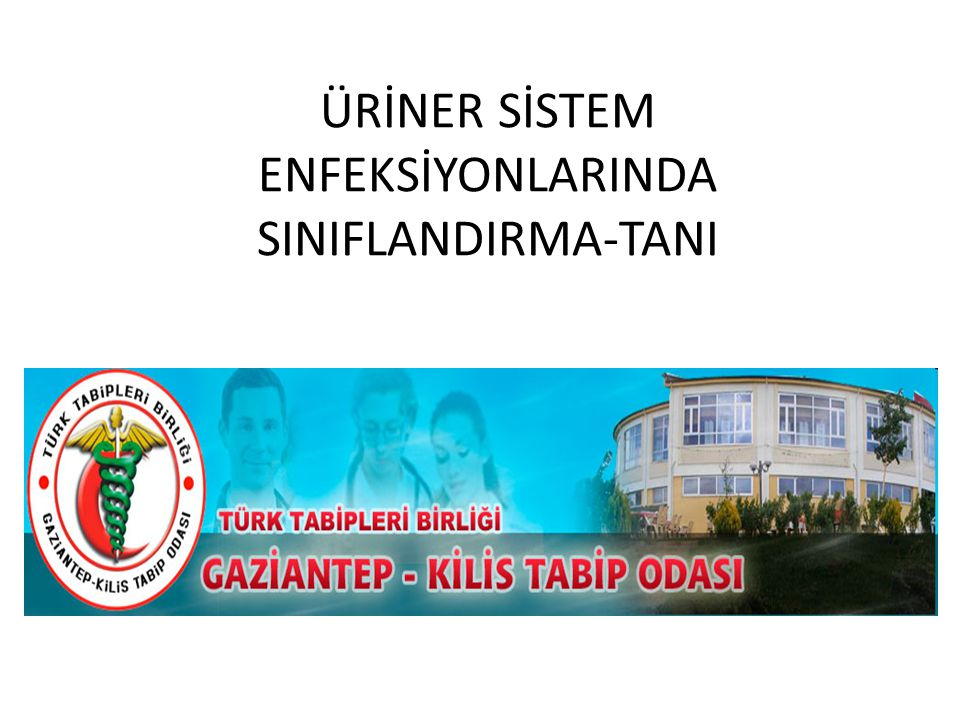 ÜRİNER SİSTEM ENFEKSİYONLARINDA SINIFLANDIRMA-TANI