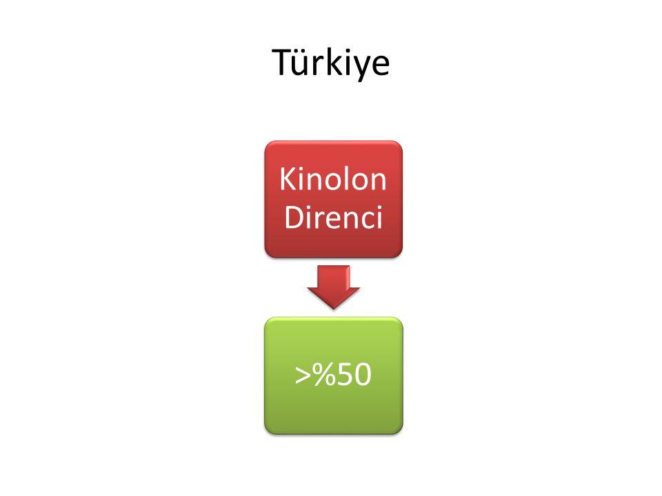 Türkiye Kinolon Direnci. >%50. Türkiyedeki kinolon direnci avrupadaki en yüksek oran.
