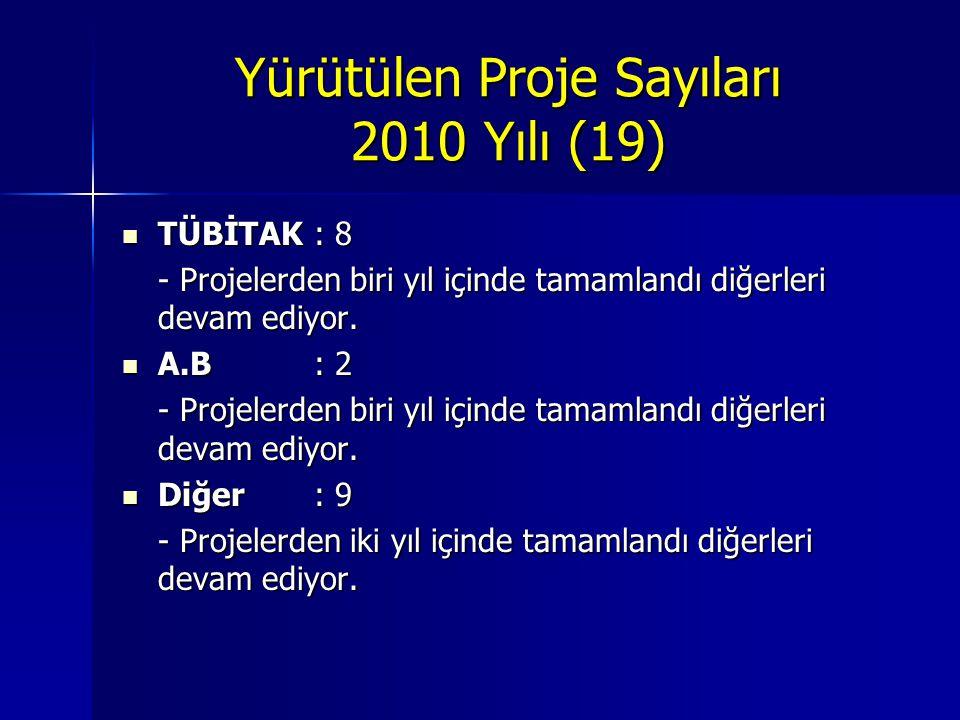 Yürütülen Proje Sayıları 2010 Yılı (19)