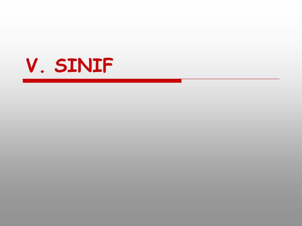 V. SINIF