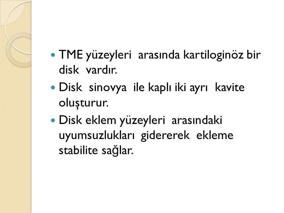 TME yüzeyleri arasında kartiloginöz bir disk vardır.
