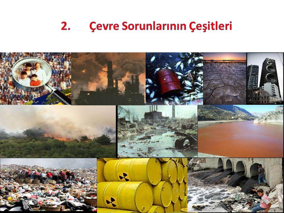 2. Çevre Sorunlarının Çeşitleri
