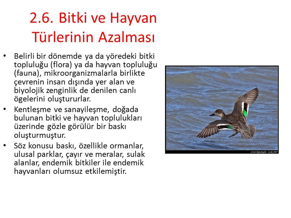 2.6. Bitki ve Hayvan Türlerinin Azalması