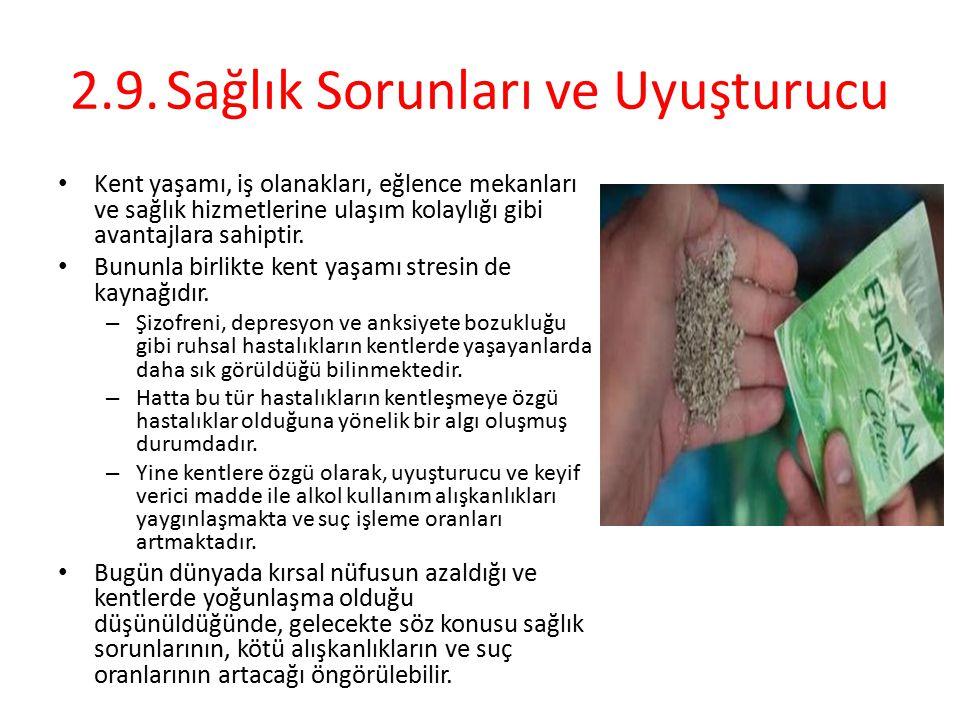 2.9. Sağlık Sorunları ve Uyuşturucu