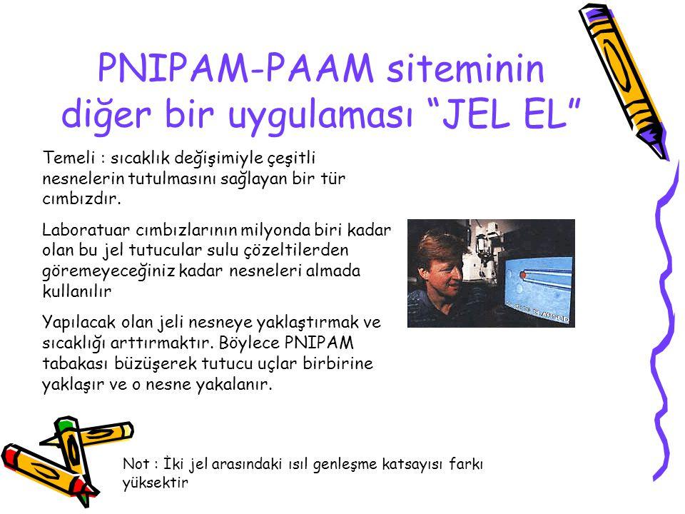 PNIPAM-PAAM siteminin diğer bir uygulaması JEL EL
