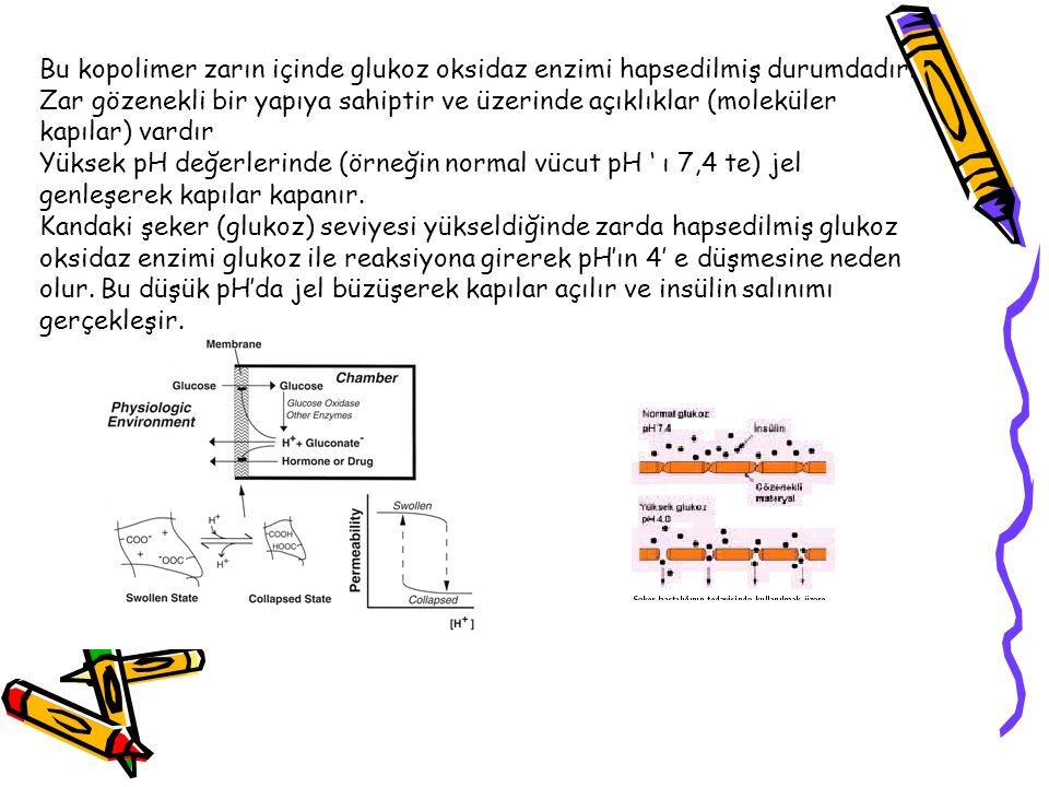 Bu kopolimer zarın içinde glukoz oksidaz enzimi hapsedilmiş durumdadır.