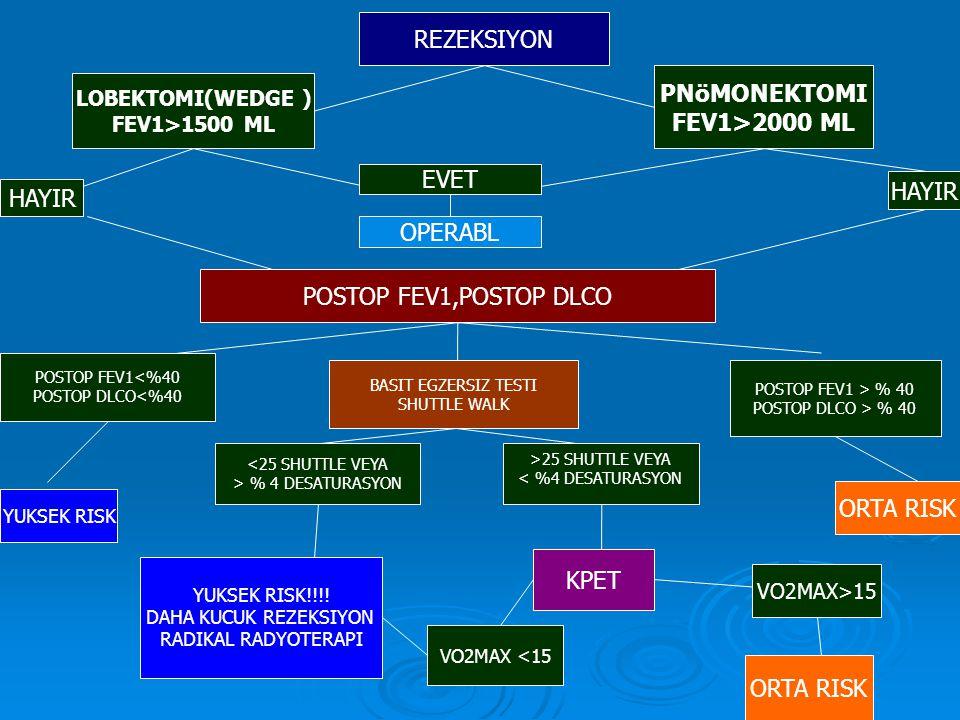 PNöMONEKTOMI FEV1>2000 ML