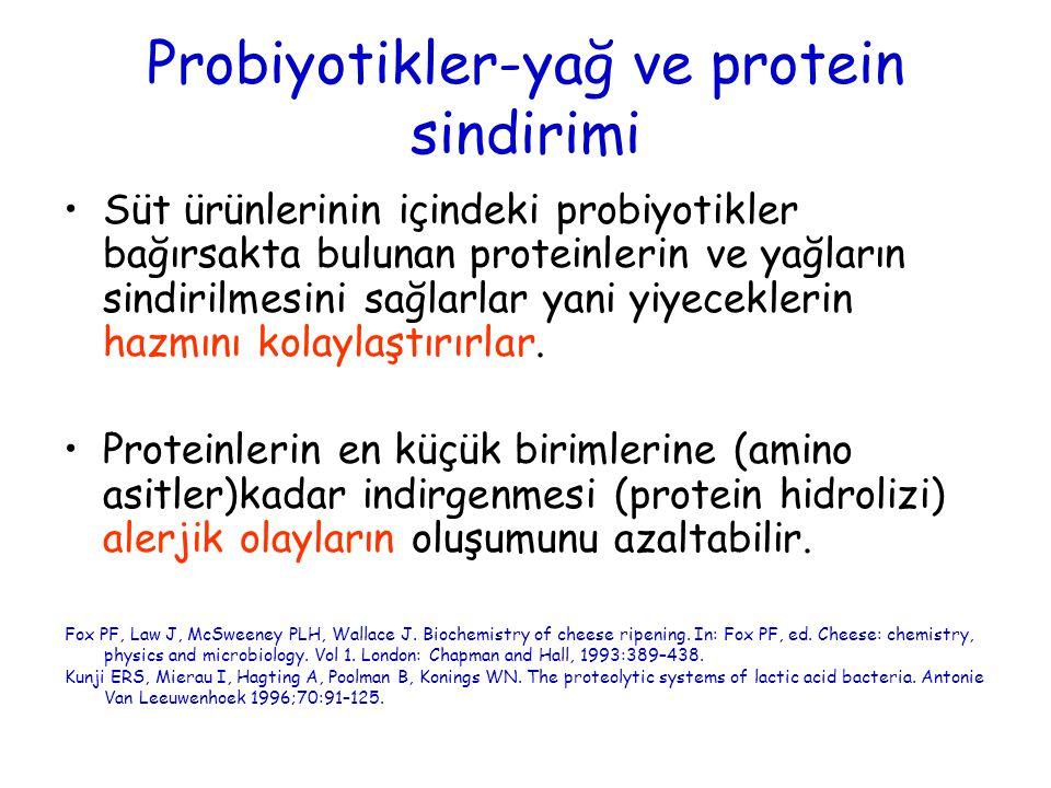 Probiyotikler-yağ ve protein sindirimi