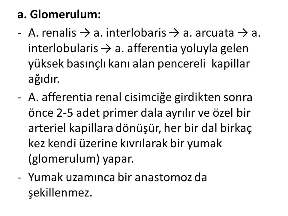 a. Glomerulum: