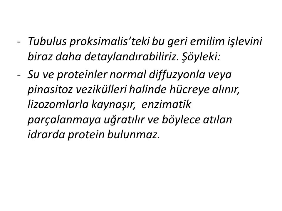 Tubulus proksimalis'teki bu geri emilim işlevini biraz daha detaylandırabiliriz. Şöyleki: