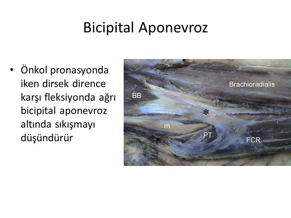 Bicipital Aponevroz Önkol pronasyonda iken dirsek dirence karşı fleksiyonda ağrı bicipital aponevroz altında sıkışmayı düşündürür.