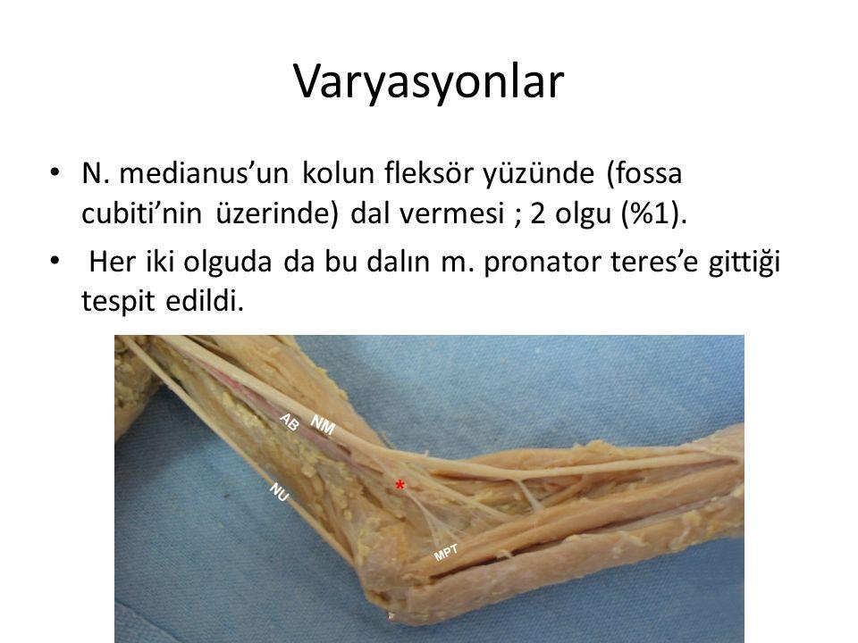 Varyasyonlar N. medianus'un kolun fleksör yüzünde (fossa cubiti'nin üzerinde) dal vermesi ; 2 olgu (%1).