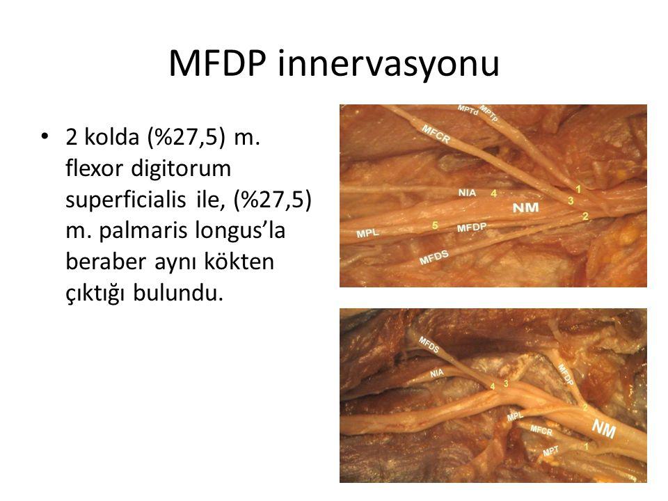 MFDP innervasyonu 2 kolda (%27,5) m. flexor digitorum superficialis ile, (%27,5) m.