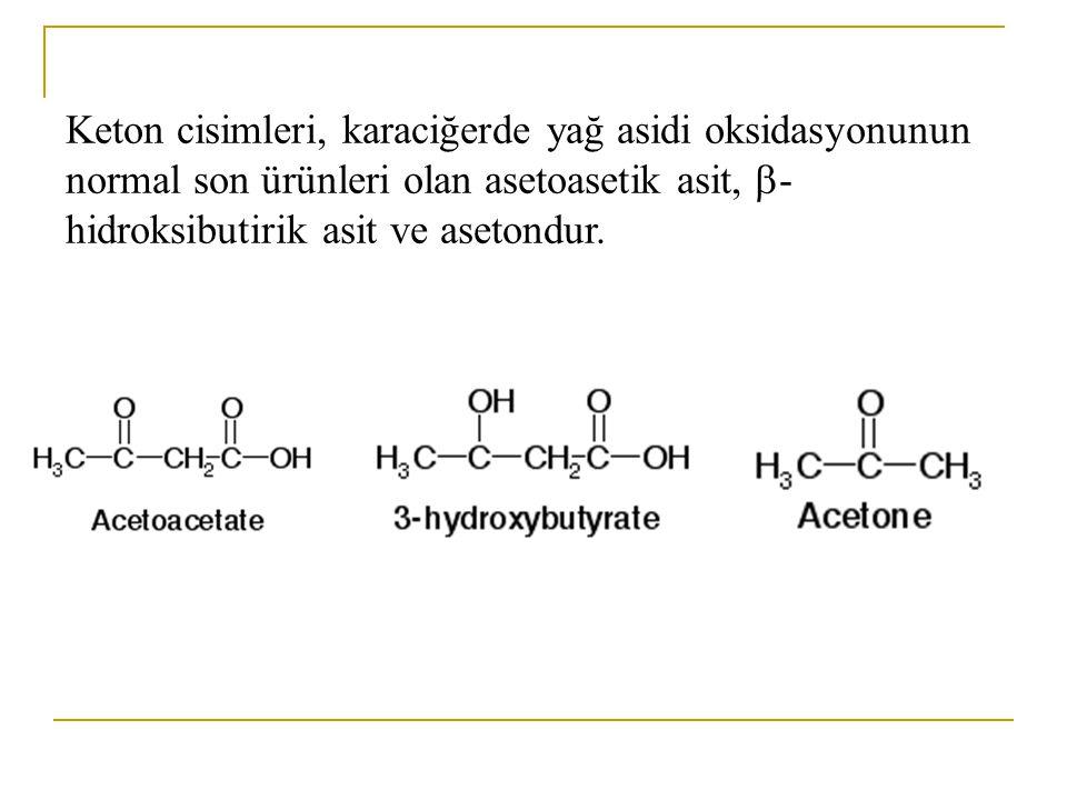 Keton cisimleri, karaciğerde yağ asidi oksidasyonunun normal son ürünleri olan asetoasetik asit, -hidroksibutirik asit ve asetondur.