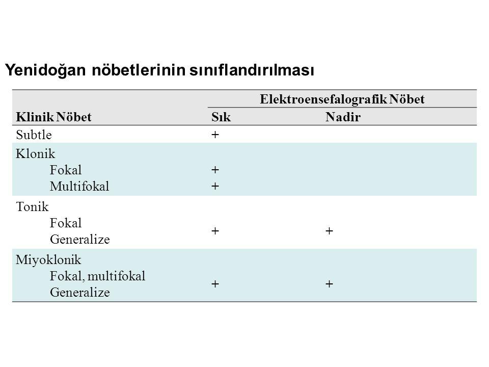 Elektroensefalografik Nöbet