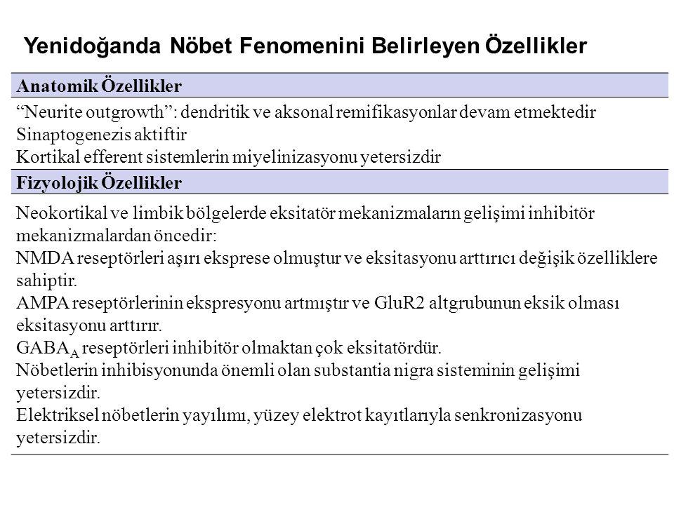 Yenidoğanda Nöbet Fenomenini Belirleyen Özellikler