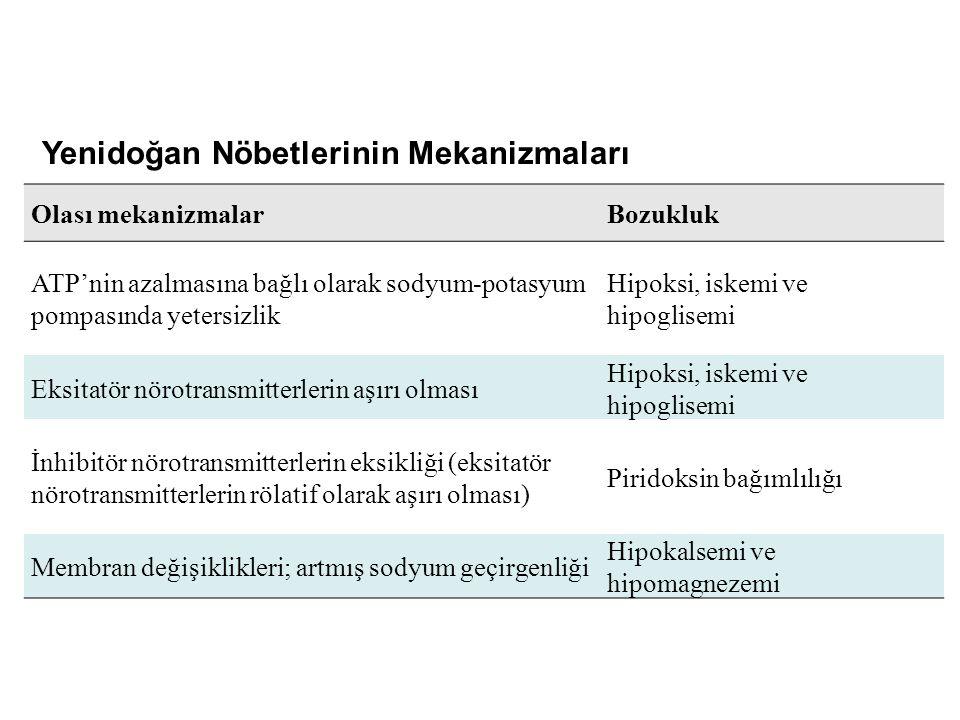 Yenidoğan Nöbetlerinin Mekanizmaları