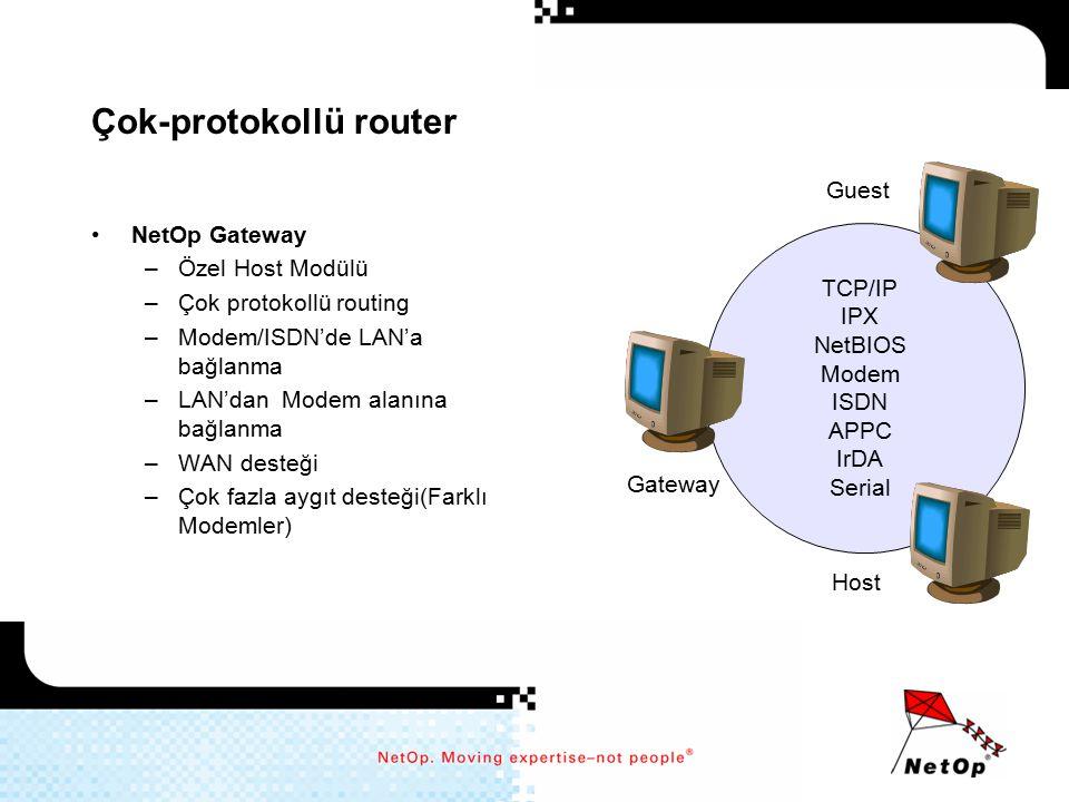 Çok-protokollü router