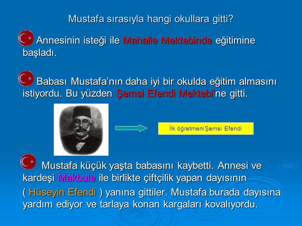 Mustafa sırasıyla hangi okullara gitti