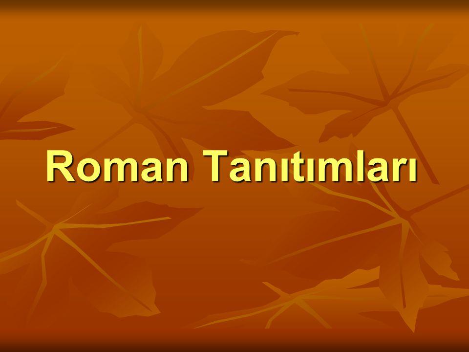 Roman Tanıtımları