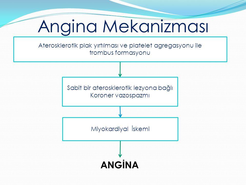 Angina Mekanizması ANGİNA