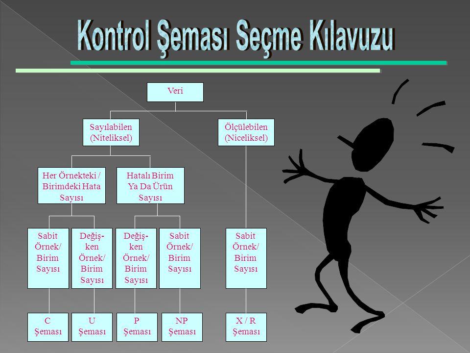 Kontrol Şeması Seçme Kılavuzu