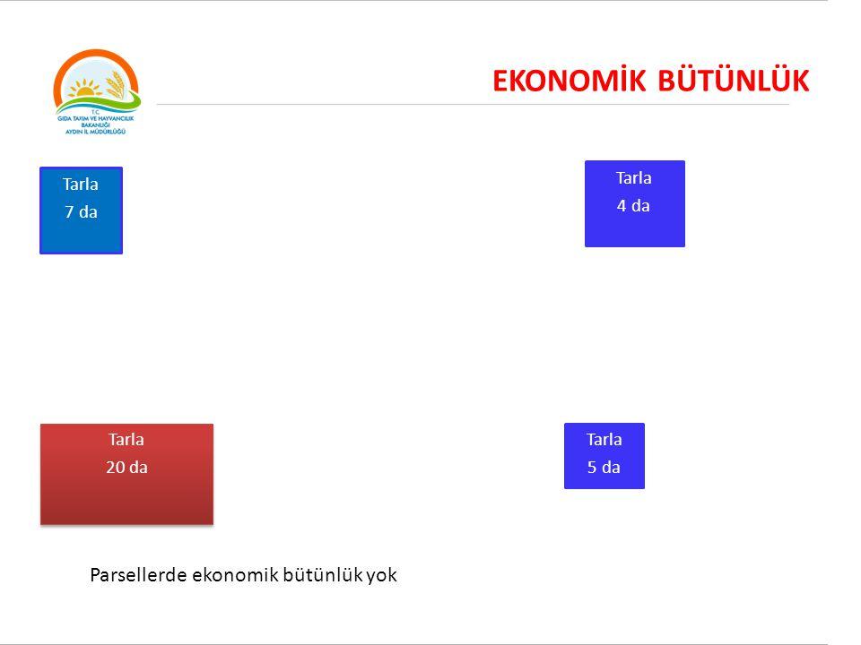 EKONOMİK BÜTÜNLÜK Parsellerde ekonomik bütünlük yok Tarla 4 da
