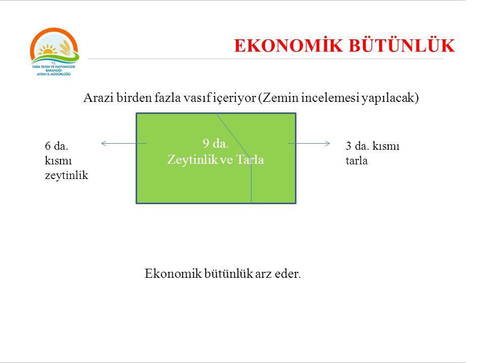 EKONOMİK BÜTÜNLÜK Arazi birden fazla vasıf içeriyor (Zemin incelemesi yapılacak) 9 da. Zeytinlik ve Tarla.