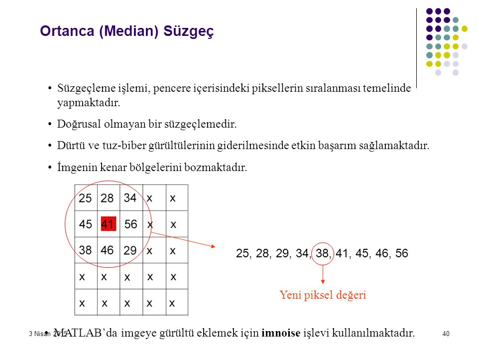 Ortanca (Median) Süzgeç