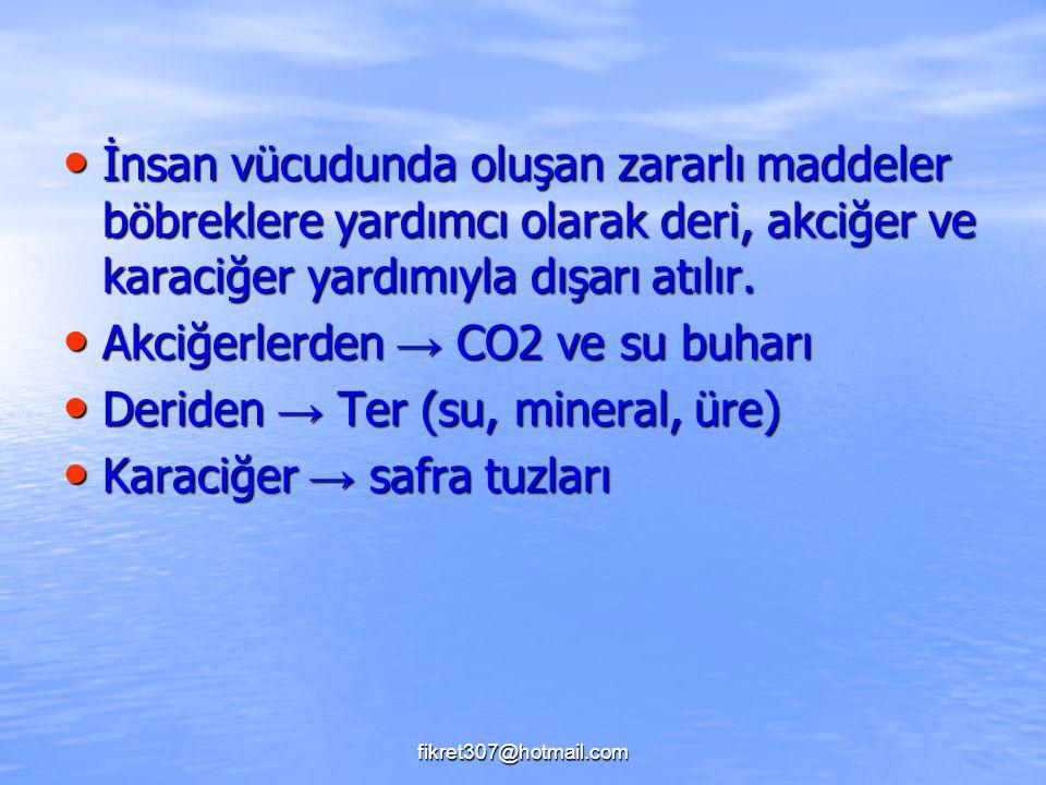 Akciğerlerden → CO2 ve su buharı Deriden → Ter (su, mineral, üre)