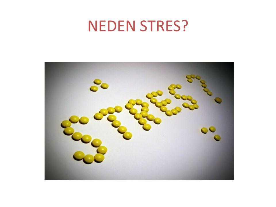 NEDEN STRES