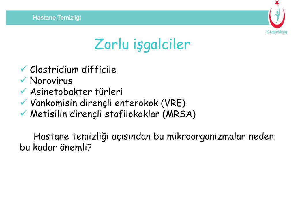 Zorlu işgalciler Clostridium difficile Norovirus Asinetobakter türleri