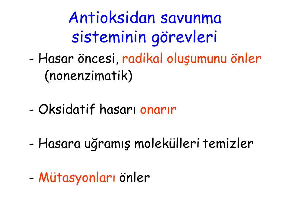 Antioksidan savunma sisteminin görevleri