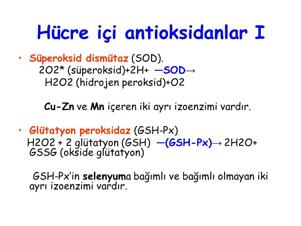 Hücre içi antioksidanlar I