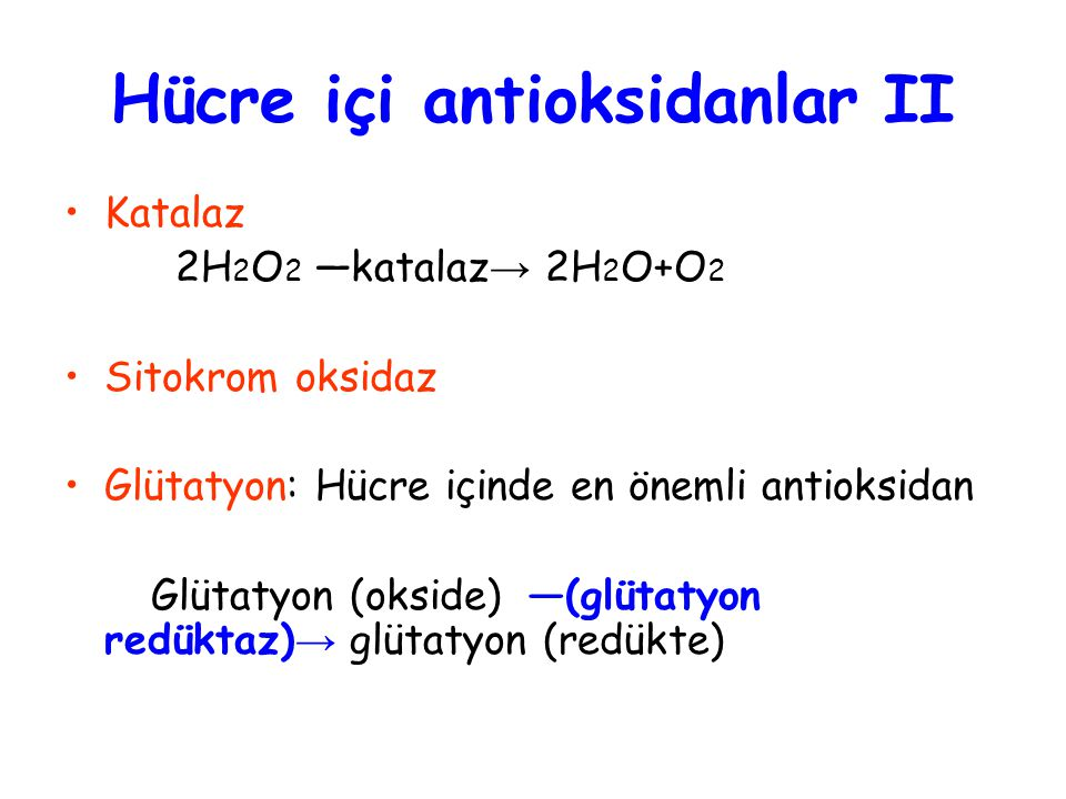 Hücre içi antioksidanlar II