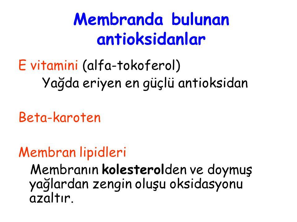 Membranda bulunan antioksidanlar
