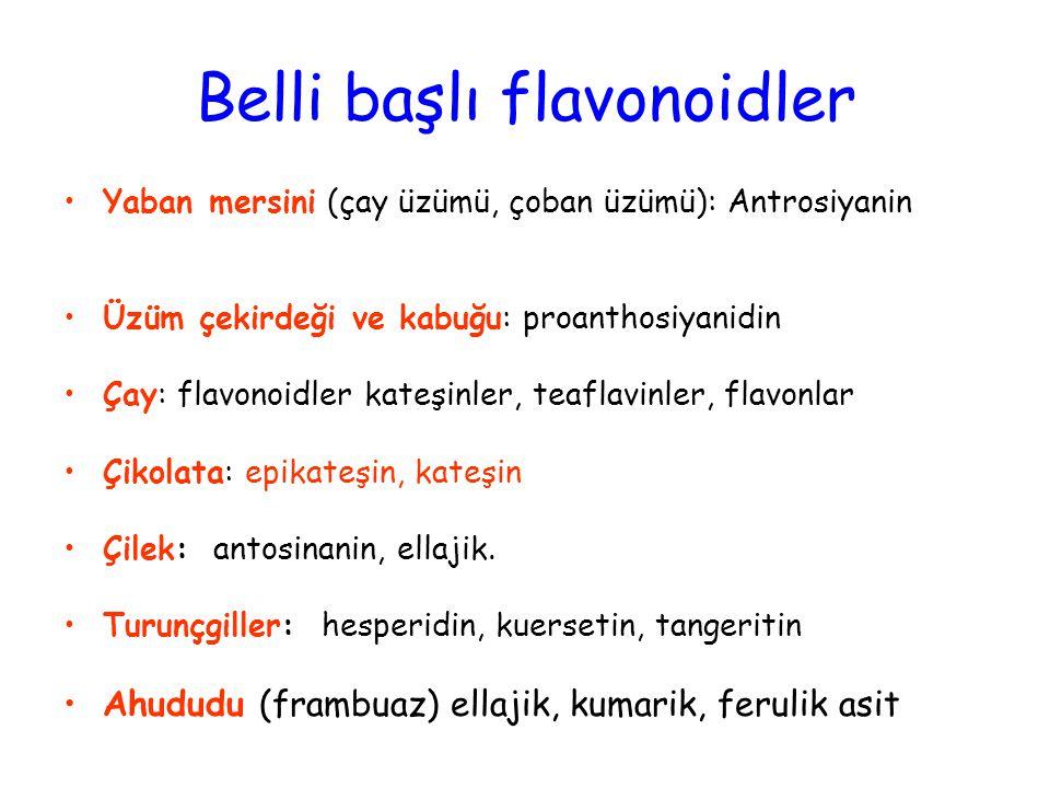 Belli başlı flavonoidler