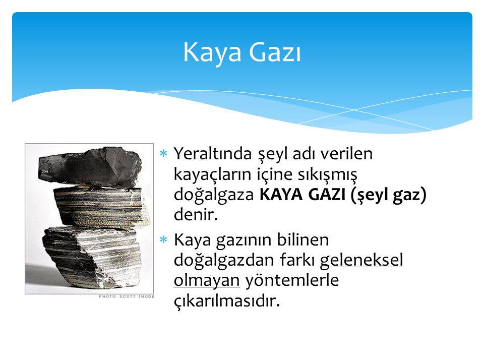 Kaya Gazı Yeraltında şeyl adı verilen kayaçların içine sıkışmış doğalgaza KAYA GAZI (şeyl gaz) denir.