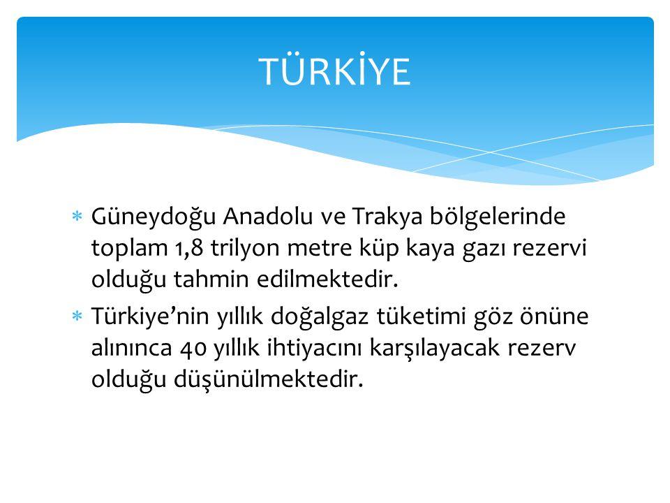 TÜRKİYE Güneydoğu Anadolu ve Trakya bölgelerinde toplam 1,8 trilyon metre küp kaya gazı rezervi olduğu tahmin edilmektedir.