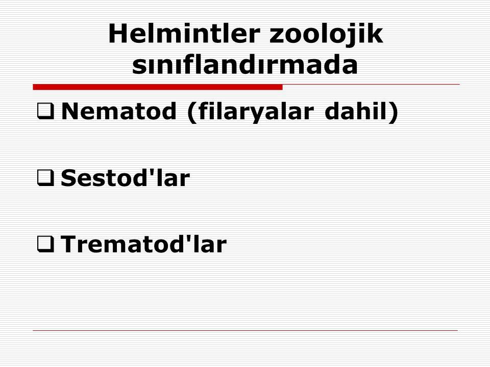Helmintler zoolojik sınıflandırmada