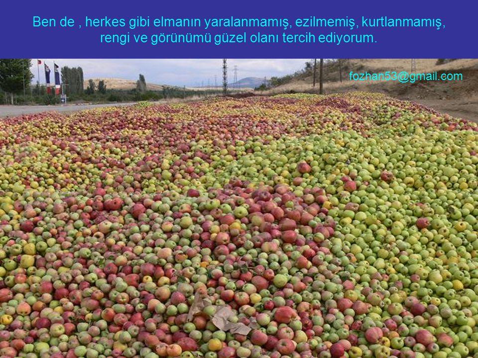 Ben de , herkes gibi elmanın yaralanmamış, ezilmemiş, kurtlanmamış, rengi ve görünümü güzel olanı tercih ediyorum.