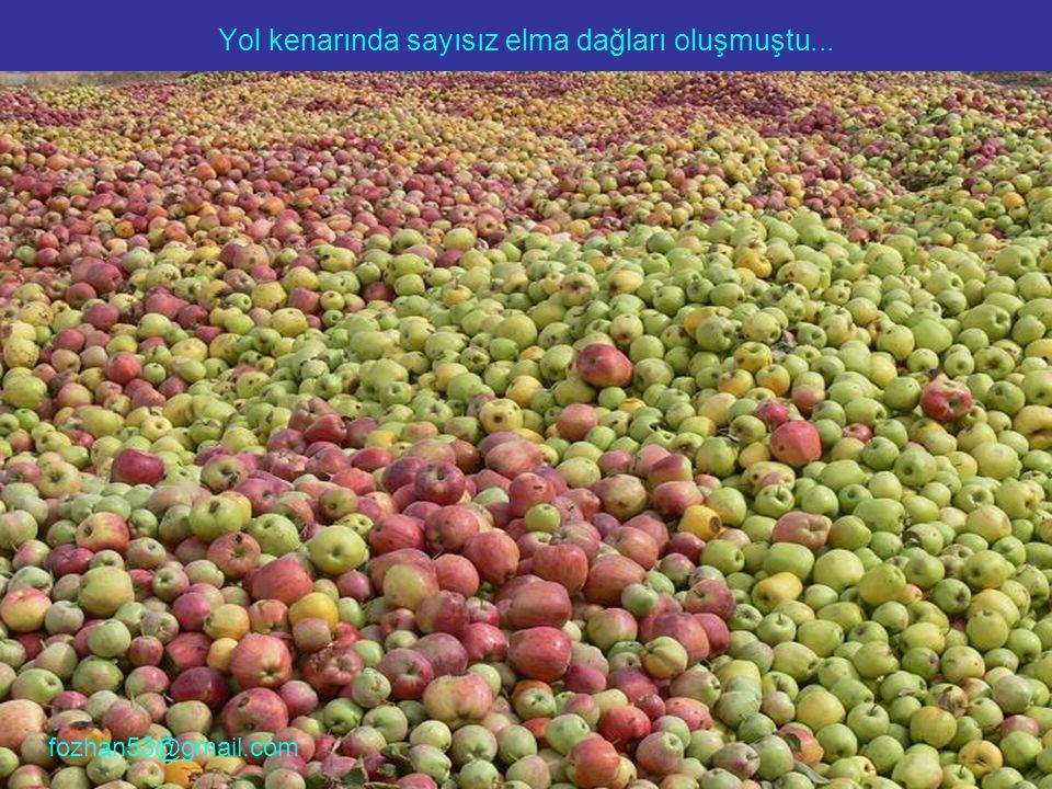 Yol kenarında sayısız elma dağları oluşmuştu...