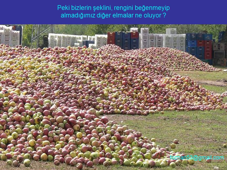 Peki bizlerin şeklini, rengini beğenmeyip almadığımız diğer elmalar ne oluyor