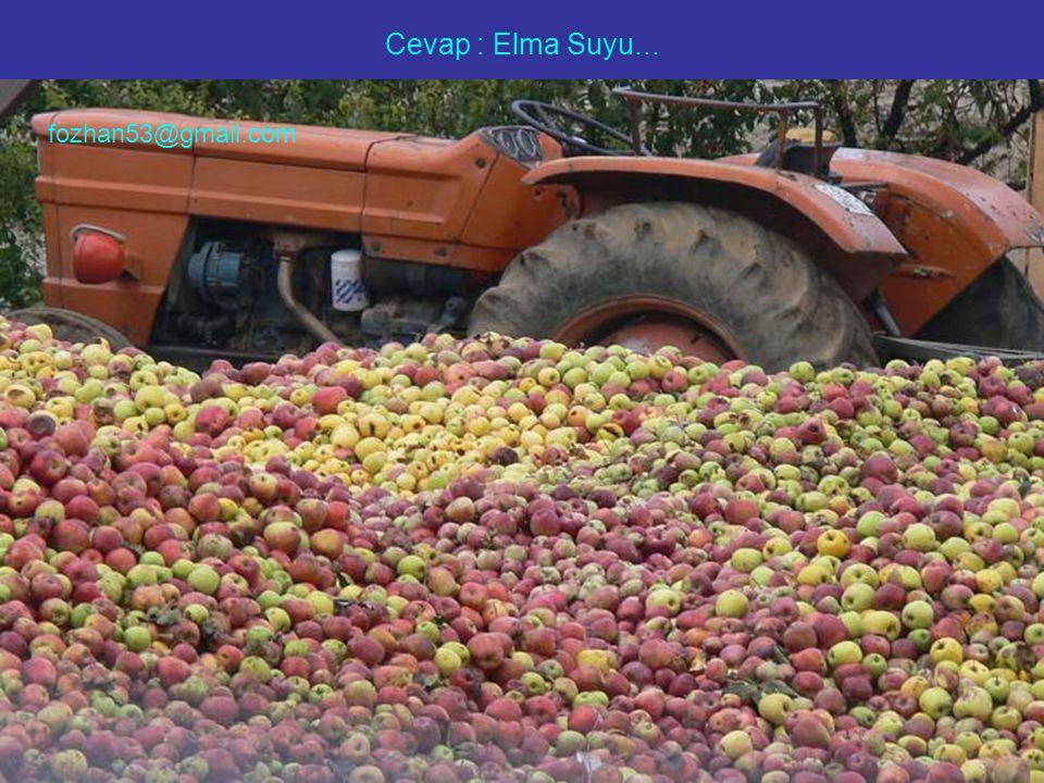 Cevap : Elma Suyu... fozhan53@gmail.com