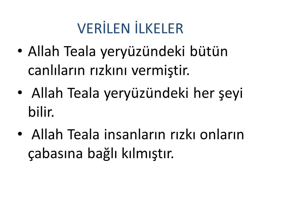 Allah Teala yeryüzündeki bütün canlıların rızkını vermiştir.