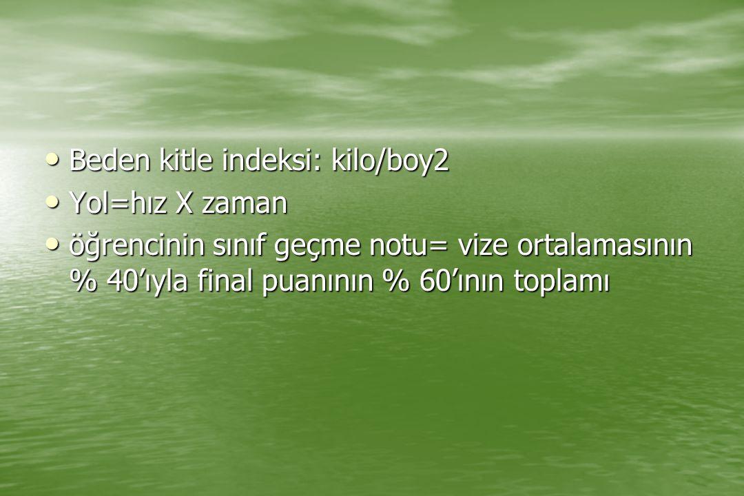 Beden kitle indeksi: kilo/boy2