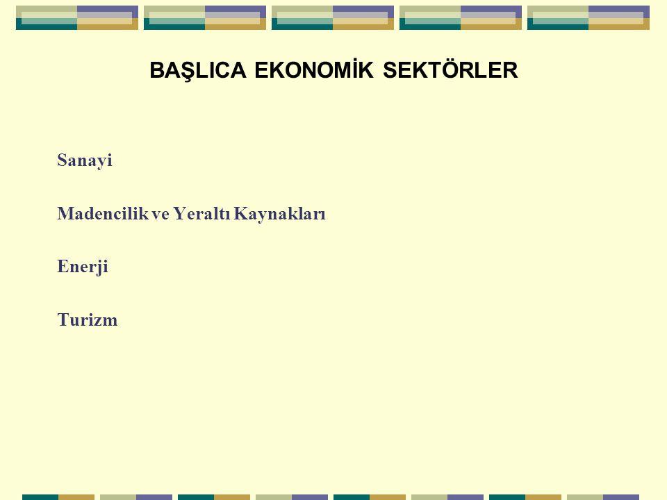 BAŞLICA EKONOMİK SEKTÖRLER