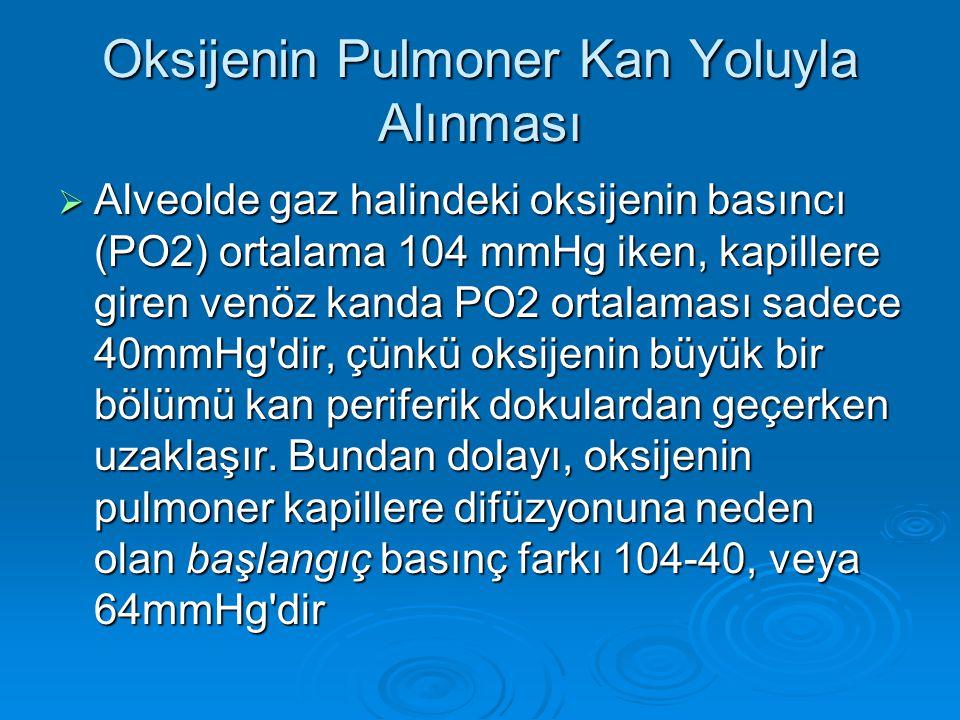 Oksijenin Pulmoner Kan Yoluyla Alınması