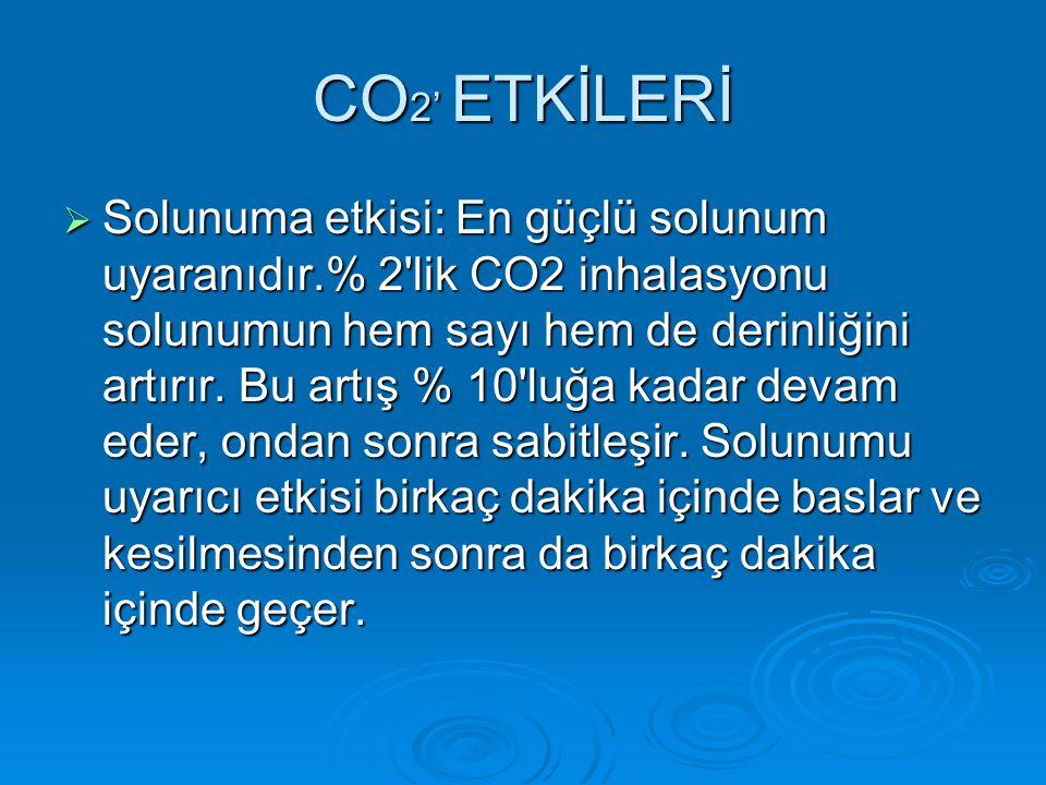 CO2' ETKİLERİ